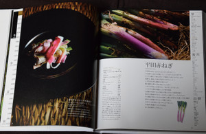 P22_09chihousousei_c_4c