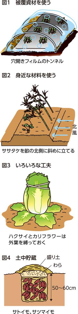 P23_11saien_4c_2